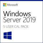 Dell Microsoft_WS_2019_5CALs_User